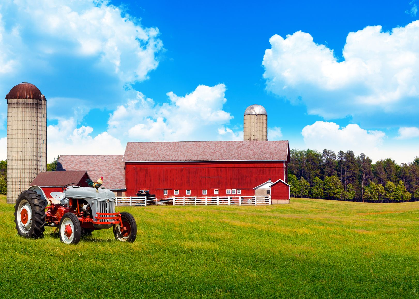 Houston Farm & Ranch Insurance